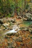 Bergflod i skoghöstlandskap fotografering för bildbyråer
