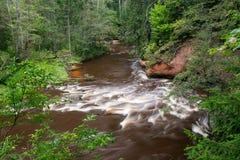 Bergflod i sommar som omges av skogen Royaltyfri Bild