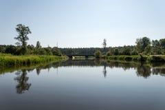 Bergflod i sommar som omges av skogen Fotografering för Bildbyråer