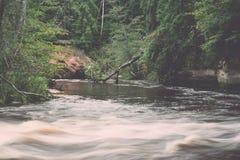 Bergflod i sommar som omges av skogen - retro tappning Arkivbild