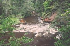 Bergflod i sommar som omges av skogen - retro tappning Royaltyfria Foton
