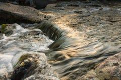 Bergflod i sommarlandskap Arkivbilder