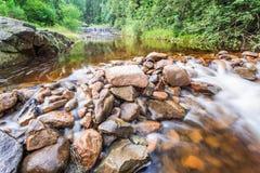 Bergflod i sommarskog Fotografering för Bildbyråer