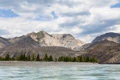 Bergflod Katun i sommar, Altai, Ryssland Arkivbilder