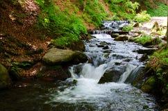 Bergflod, landskap carpathians Royaltyfria Foton