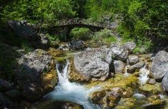 Bergflod med en vattenfall bland stonesÑŽen Royaltyfria Foton