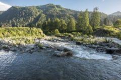 Bergflod med forsar Arkivbilder