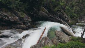 Bergflod med kaskadvattenfallet i skog lager videofilmer