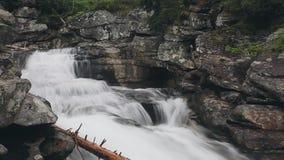Bergflod med kaskadvattenfallet i skog arkivfilmer