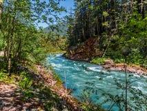 Bergflod med lösa forsar Royaltyfria Foton