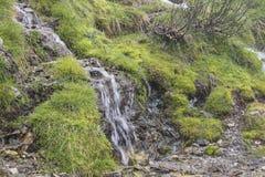 Bergflod med lite vattenfallet med mossa och gräs Royaltyfri Foto
