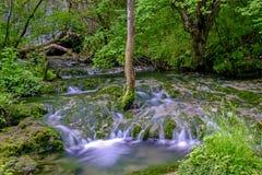 Bergflod med rinnande vatten Royaltyfri Bild