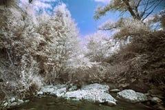 Bergflod med steninfraredfotoet Arkivbild