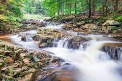 Bergflod mycket av rent vatten Fotografering för Bildbyråer