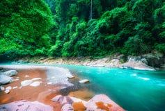 Bergflod och tät djungel Sumatra Indonesien Arkivbild