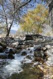 Bergflod som flödar från den gamla bron Arkivbilder