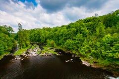 Bergflod som flödar längs gröna kullar Frodigt vegetationlandskap arkivfoto