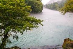Bergflod, wood flod royaltyfri fotografi