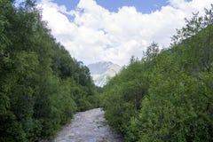 Bergfloden bland gräsplanen flödar till berget, Kaukasus, Ryssland Royaltyfria Foton