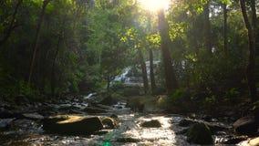 Bergfloden blir från vattenfallet och flödar till och med tropisk regnskogdjungel i Doi Inthanon, Thailand arkivfilmer