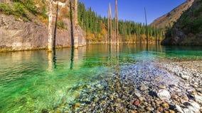 Bergfloden flödar in i sjön Kaindy i Kasakhstan 4K TimeLapse - September 2016, Almaty och Astana, Kasakhstan lager videofilmer