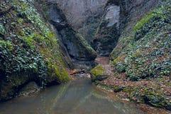 Bergfloden i klyftan Fotografering för Bildbyråer