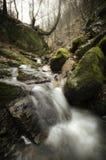Bergfloden med vaggar och vattenfallet Arkivfoto