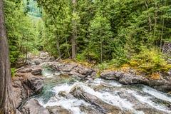 Bergflodvattenfall - bedrägeriliten viknedgångar - till och med skog arkivfoton