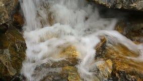 Bergflodvattenfall i skog lager videofilmer
