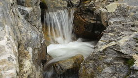 Bergflodvattenfall i skog arkivfilmer
