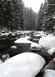 bergflodvinter Fotografering för Bildbyråer