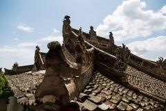Berggansus Kongtong chinese stockbild