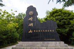 Berggansus Kongtong chinese lizenzfreie stockfotos