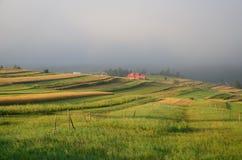 Berggebied in de mist Royalty-vrije Stock Fotografie