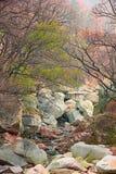 Berggebied in Mist stock foto
