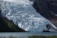 bergglaciär Arkivbild