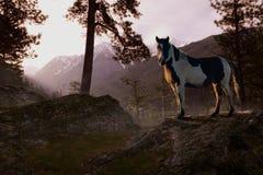 bergglans Royaltyfria Bilder