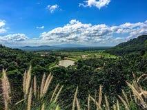 Berggrönska under blå himmel med moln Arkivbild