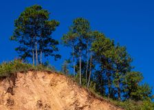 Berggrondverschuiving op een ecologisch gevaarlijk gebied Grote barsten in aarde, afdaling van grote lagen van aarde blokkerende  royalty-vrije stock foto's