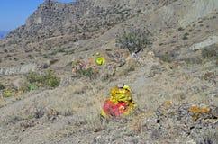 Berghang mit verschiedenen geheimnisvollen Gottheiten der selbst gemacht Altare Lizenzfreie Stockbilder