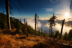 Berghav av moln Arkivbilder
