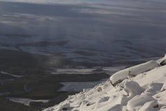 Berghazen, Lepus-timidus die, zitting, op een zonnige dag in de sneeuw tijdens de winter in het rookkwarts nationale park lopen,  Royalty-vrije Stock Afbeeldingen
