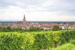 Bergheim (阿尔萨斯) -有葡萄园的全景 免版税库存照片