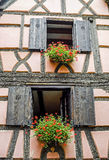 Bergheim (Alsace) - House and flowers Royalty Free Stock Photos
