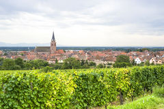 Bergheim (Alsace) - Panorama with vineyard Royalty Free Stock Photos