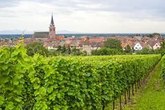 Bergheim (Alsace) - Panorama with vineyard Royalty Free Stock Photography