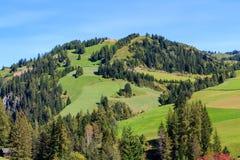 Berghelling in het Dolomiet Stock Foto