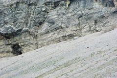 Berghelling in Oostenrijk met twee gemzen royalty-vrije stock fotografie