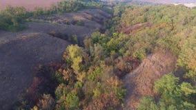 Bergig ravin med höstträd, buskar och gräs flyg- sikt lager videofilmer