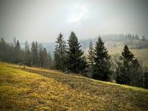 Bergigt grönt landskap Arkivbilder